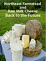 Northeast Farmstead and Raw Milk Cheese: Back to the Future: Baum Forum